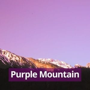 Purple Mountain Meditation Track